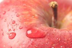 Primo piano bagnato della mela Immagine Stock