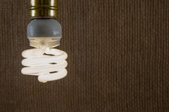 Primo piano bianco della lampadina di CFL Immagine Stock