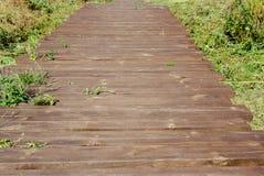 Primo piano che retrocede nella traccia di escursione di distanza delle plance di legno marroni fotografia stock libera da diritti