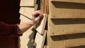Primo piano, chiodo del carpentiere delle mani il bordo contro una parete di legno con un martello e chiodi stock footage