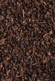 Primo piano cinese della foglia di tè Fotografie Stock Libere da Diritti
