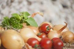 Primo piano cipolle del rendimento di autunno di intere, pomodori ciliegia e basilico e prezzemolo freschi al sole Immagini Stock