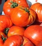 Primo piano con i grandi pomodori deliziosi piacevoli Immagini Stock