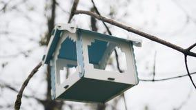 Primo piano degli alimentatori dell'uccello che appendono su un albero Cura degli animali nave stock footage