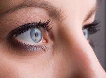 Primo piano degli occhi azzurri fotografia stock