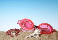 Primo piano degli occhiali di protezione di nuotata con la conchiglia Fotografie Stock Libere da Diritti
