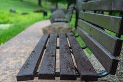 Primo piano dei banchi di parco vuoti in foglie di Sunny Summer Day With Golden in alberi, Lettonia, Europa, concetto di tristezz immagine stock