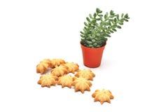 Primo piano dei biscotti di burro Fotografia Stock