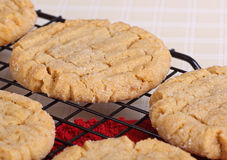 Primo piano dei biscotti di burro di arachidi Fotografie Stock