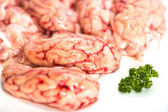 Primo piano dei cervelli crudi con prezzemolo immagini stock libere da diritti