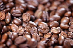 Primo piano dei chicchi di caffè arrostiti Immagini Stock