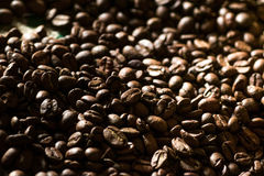 Primo piano dei chicchi di caffè arrostiti Fotografie Stock Libere da Diritti