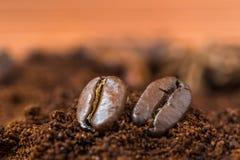 Primo piano dei chicchi di caffè con il mucchio arrostito del caffè Fotografia Stock
