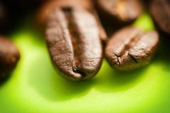 Primo piano dei chicchi di caffè, macro su un fondo verde immagini stock libere da diritti