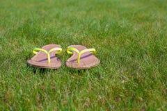Primo piano dei Flip-flop luminosi su erba verde Fotografia Stock Libera da Diritti