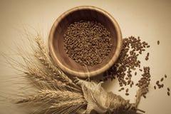 Primo piano dei germi di grano Immagine Stock Libera da Diritti