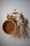 Primo piano dei germi di grano Fotografia Stock
