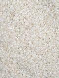 Primo piano dei granuli del riso Fotografie Stock Libere da Diritti