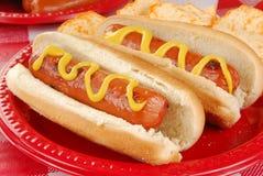 Primo piano dei hot dog Fotografia Stock
