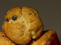 Primo piano dei muffin Fotografie Stock Libere da Diritti