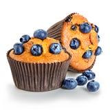 Primo piano dei muffin isolato su un bianco Fotografia Stock Libera da Diritti
