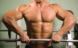 Primo piano dei pesi di sollevamento del bodybuilder Immagine Stock