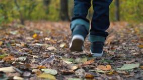Primo piano dei piedi di un ragazzo sulle foglie gialle nel parco di autunno Un ragazzo passa tramite le foglie cadute gialle nel video d archivio