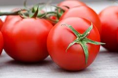 Primo piano dei pomodori Fotografie Stock