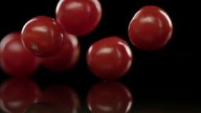 Primo piano dei pomodori ciliegia di caduta video d archivio