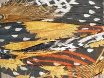 Primo piano dei tessuti di cotone modellati etnici astratti Fotografie Stock