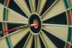 Primo piano del bordo di dardo con il dardo negli occhi di tori fotografia stock