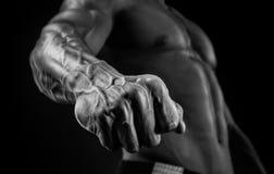 Primo piano del braccio e del torso muscolari atletici Immagini Stock