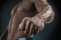 Primo piano del braccio e del torso muscolari atletici Fotografia Stock
