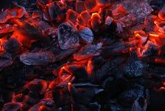 Primo piano del carbone di legna burning immagine stock