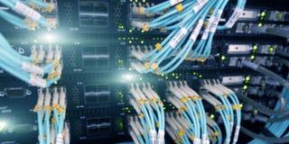 Primo piano del cavo ottico Tecnologia, cavo a fibre ottiche e commutatore dei dispositivi di rete immagini stock libere da diritti
