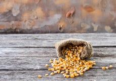 Primo piano del cereale del grano su fondo di legno Fotografia Stock