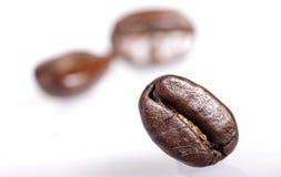 Primo piano del chicco di caffè Fotografia Stock
