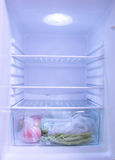 Primo piano del congelatore di frigorifero Fotografie Stock