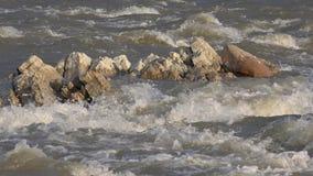 Primo piano del fiume della montagna, ruscello della primavera, insenatura con le pietre, rocce, vista della natura video d archivio