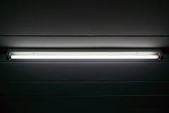 Primo piano del fluorescente fotografia stock