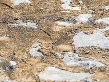 Primo piano del fondo sporco del pavimento del cemento Fotografie Stock Libere da Diritti