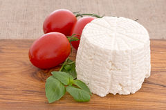 Primo piano del formaggio di ricotta dell'artigiano Fotografia Stock