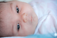 Primo piano del fronte del bambino, fuoco selettivo Fotografia Stock