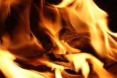 Primo piano del fuoco Fotografia Stock