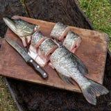 Primo piano del luccio del pesce fresco nelle fette delle parti affettate con knif Fotografia Stock