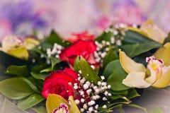 Primo piano del mazzo di Alstroemeria e delle rose Immagine Stock