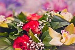 Primo piano del mazzo di Alstroemeria e delle rose Immagini Stock Libere da Diritti