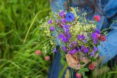Primo piano del mazzo luminoso di bei wildflowers di estate su fondo del prato verde Concetto delle stagioni Fotografie Stock