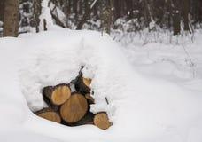 Primo piano del mucchio dei ceppi innevati del legname Fotografia Stock