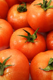 Primo piano del mucchio del pomodoro Fotografie Stock